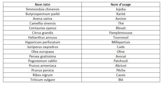 Nom d usage inkh lables for Noms de plantes avec photos